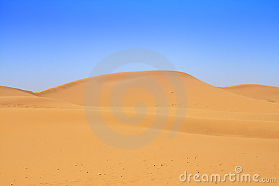 Sand dunes and beautiful cloudless sky