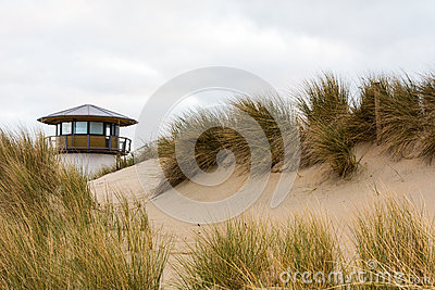 Sand dunes and coastal grasses