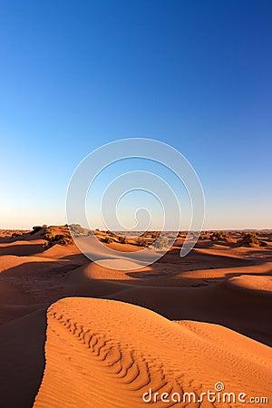 Sand dunes of Erg Chigaga