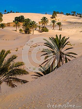 Free Sand Dunes In The Sahara Desert Near Douz Tunisia Africa Stock Photos - 110975433
