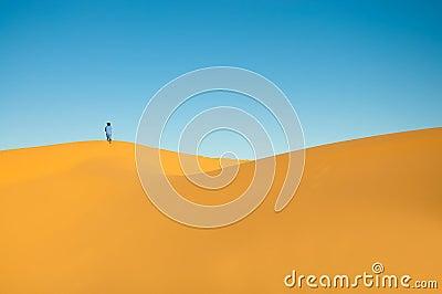 Sand dunes, Moroccan Sahara