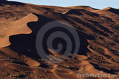 Sand dunes in the Namib Desert in Namibia