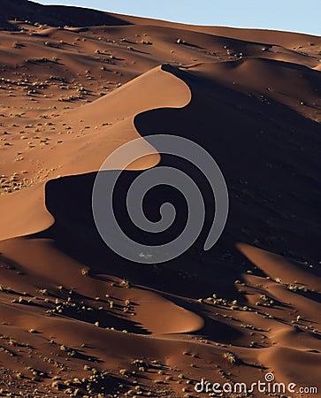 Sand dunes in the Namib Desert in Namibia