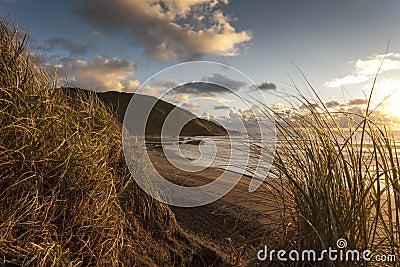 Sand Dunes at Sunset Beach