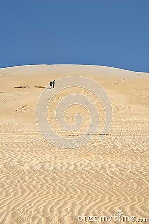Sand Dunes - Te Paki Stream, New Zealand