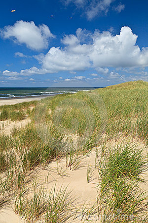 Free Sand Dunes With Helmet Grass Royalty Free Stock Photo - 20261115