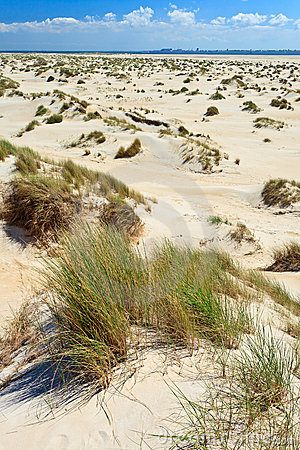 Free Sand Dunes With Helmet Grass Stock Photography - 20261602