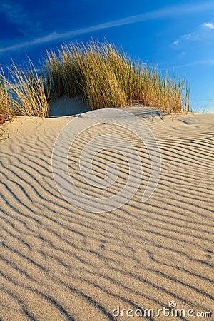 Free Sand Dunes With Helmet Grass Stock Image - 20261661