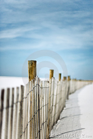 Sand Fence in the Dunes at the Beach