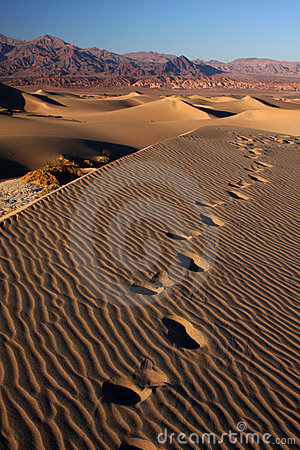 Sand footsteps