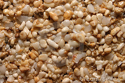 Sand Grains Background Texture