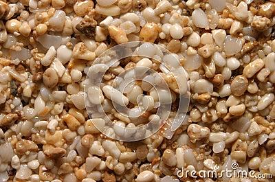 Sand Grains Background Texture