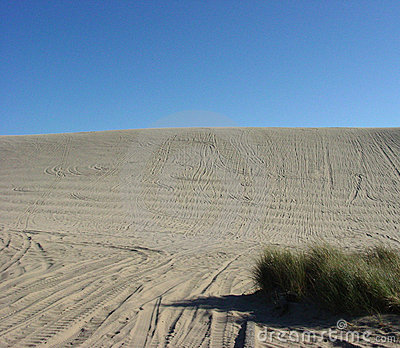 The Sand Hill