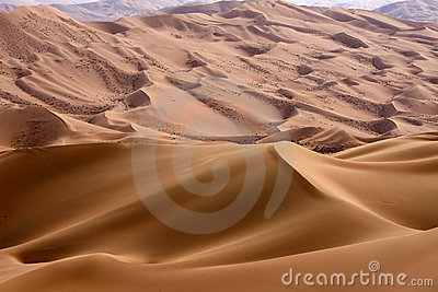 The sand hills