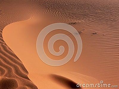Sand pattern details