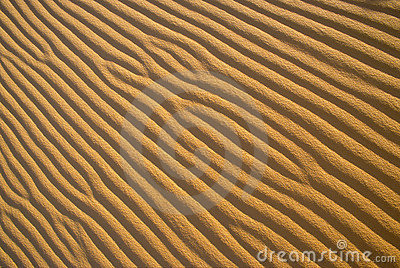 Sand Ripple Patterns