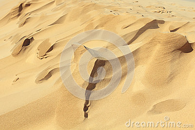 Sand shapes created by wind