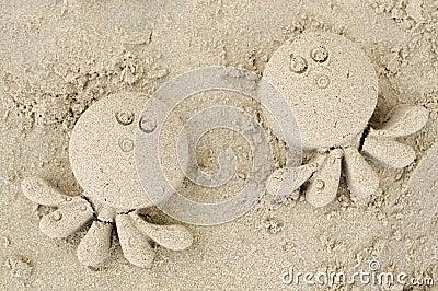 Sand squid