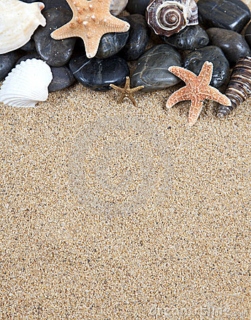 Sand and starfish