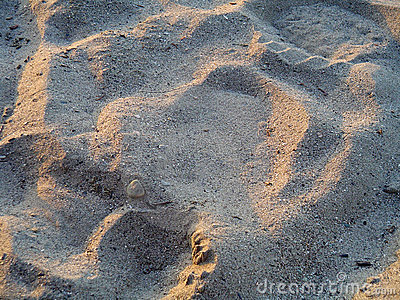 Sand Tale