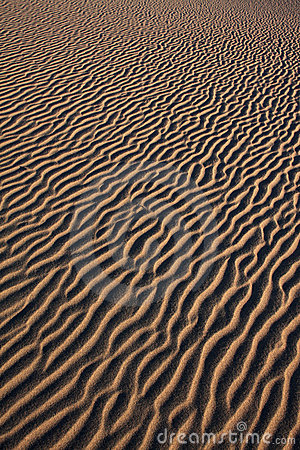 Free Sand Texture Stock Photography - 16428122