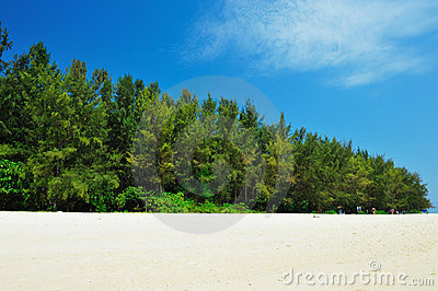 On the sand tropical beach. Andaman sea