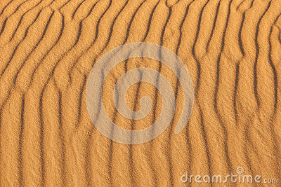 Sand waves in the beach