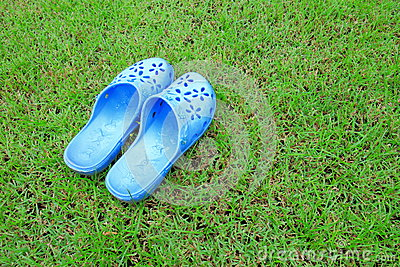 Sandal on the green lawn