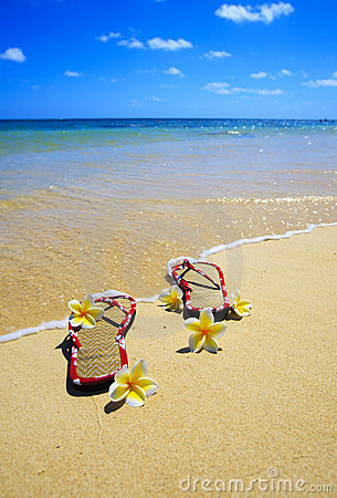 Free Sandals And Flowers On A Hawaii Beach Royalty Free Stock Photos - 9369378