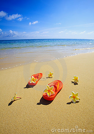 Free Sandals And Flowers On A Hawaii Beach Royalty Free Stock Photo - 9382055