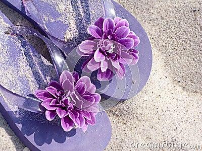 Sandals on beach sand