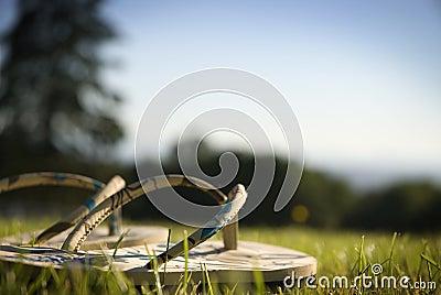 Sandals on Grass