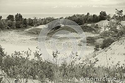 Sandbanks Landscape