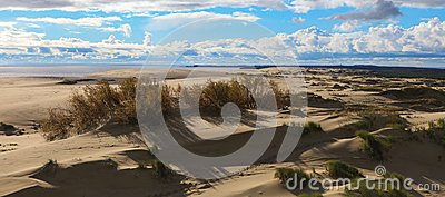 Sands of the Curonian Spit