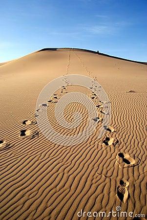 Free Sands Dunes On Gobi Desert In Mongolia Royalty Free Stock Photos - 22589628