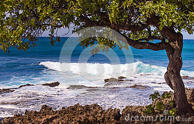 North Shore Coast, Oahu, Hawaii