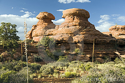 Sandstone Hoodoos in Grand Canyon
