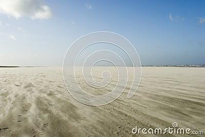 Sandstorm on Schiermonnikoog beach
