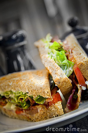 Free Sandwich Royalty Free Stock Photos - 2931288