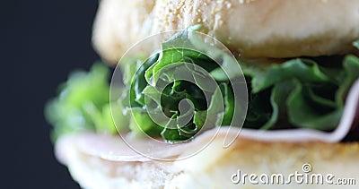 Sandwich on black background. Closeup of rotating sandwich. stock video