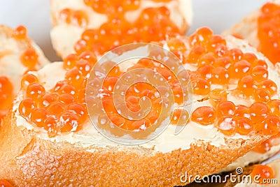 Sandwich caviar closeup