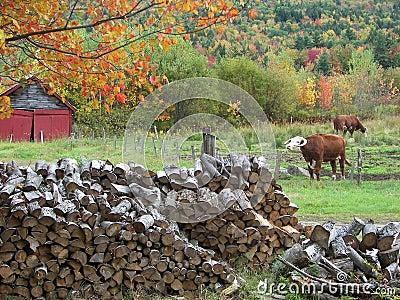 Sandwich, New Hampshire