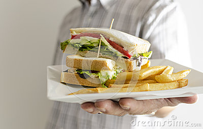 Aninimal Book: Sandwich Royalty Free Stock Photography - Image: 31857367