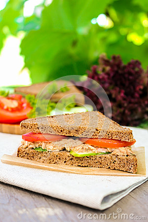 Free Sandwich With Rye Brown Bread, Ripe Tomatoes, Cucumbers And Tuna Fish For Healthy Snack Stock Photography - 72995462