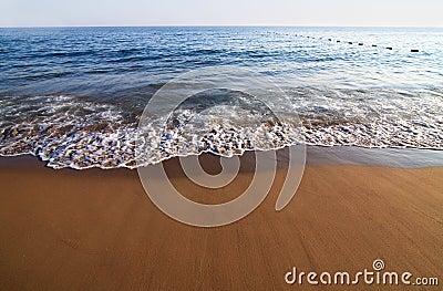 Sandy beach and surf.