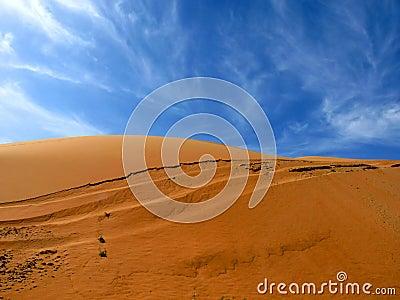 Sandy Desert Dunes