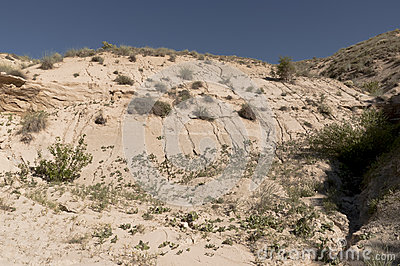 Sandy eroded cliff face