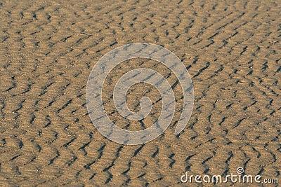 Sandy-Hintergrund
