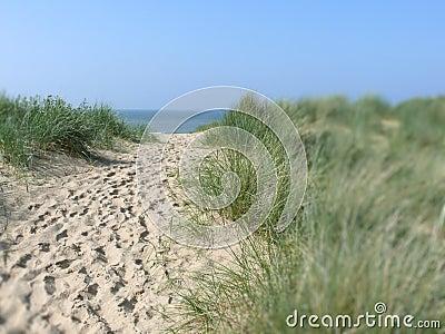 Sandy path to beach