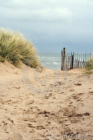 Free Sandy Path To The Beach Stock Photography - 4773292